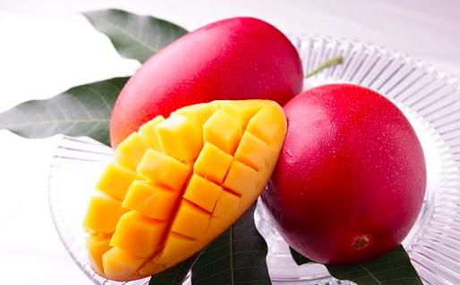 宮崎の完熟マンゴー「太陽のタマゴ」を安く手に入れるには?地元おすすめの方法とは?